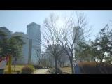 Why we love seoul