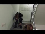 Пьяная малолетка упала с лестницы