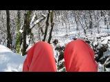 Отдых в красивом южно зимнем лесу
