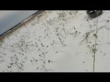 Буря мглою Небо кроет Вихри Снежные крутя !!)))