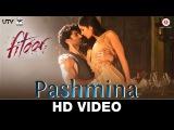 Pashmina Fitoor Aditya Roy Kapur, Katrina Kaif Amit Trivedi love song