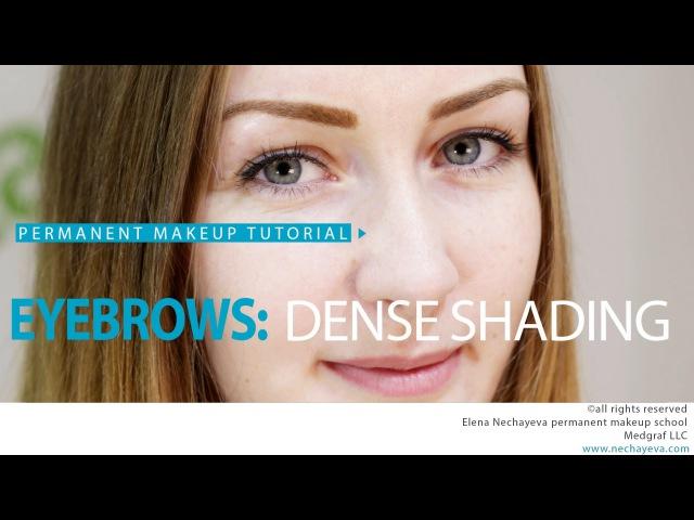 Permanent Makeup Tutorial: Eyebrows Dense Shading / Обучение татуажу: плотная растушевка бровей