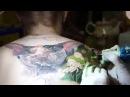 """Татуировка в процессе «Лысый Кот» (часть 2)  Tattoo in the process """"Bald Cat"""" (part 2)"""