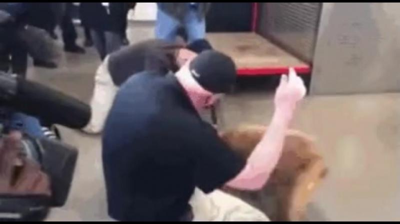 Ветеран воссоединился со своей собакой-ищейкой