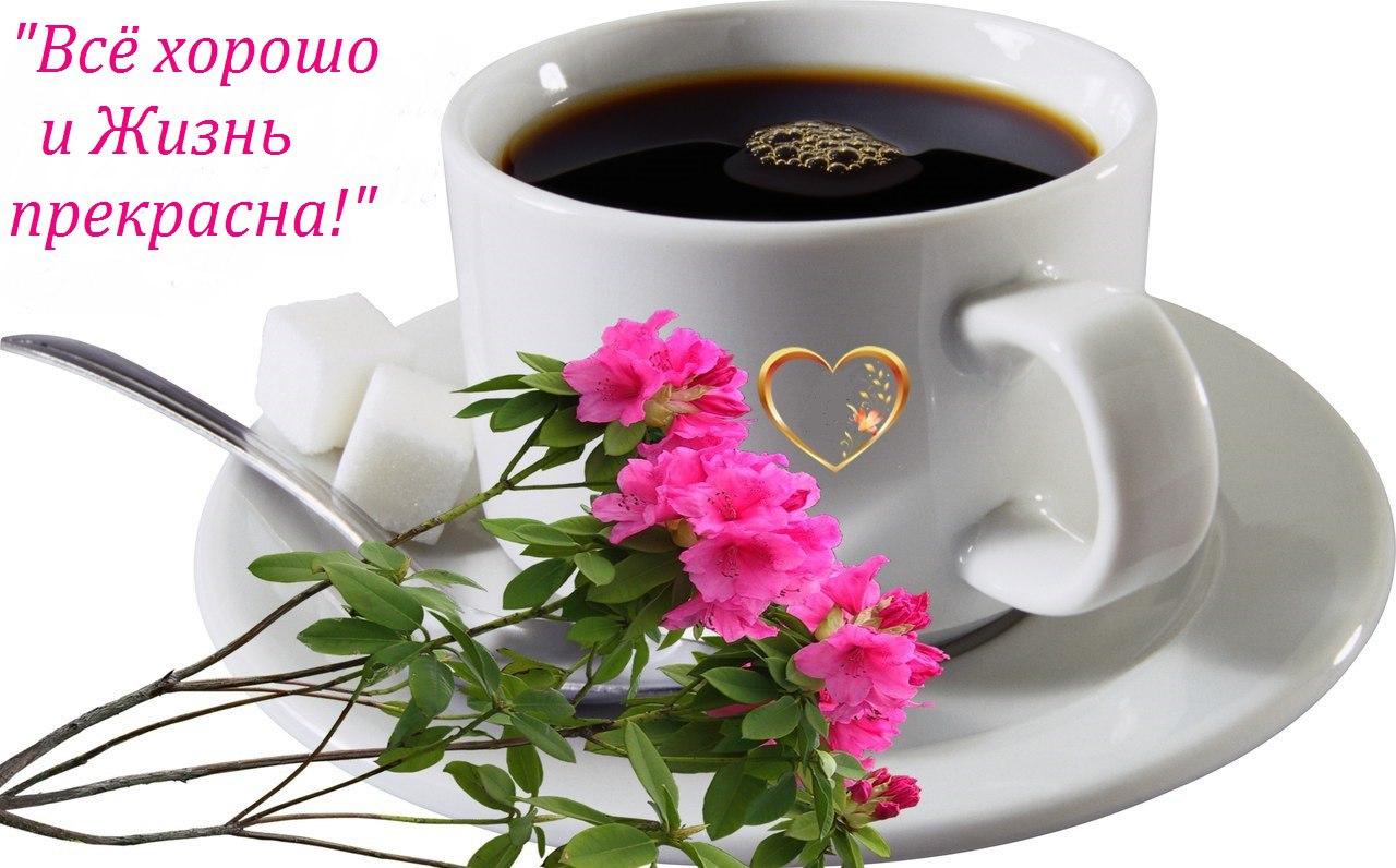 Фото открытки с добрым утром и хорошего дня