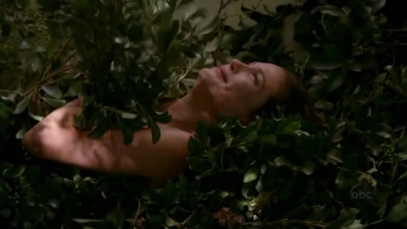 Desperate housewives - Susan naked