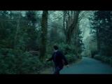 Фильм ЛОБСТЕР The LOBSTER (Великобритания, Греция, Ирландия, Нидерланды, США), 2015, реж. Йоргос Лантимос.