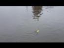 M/V Bread boat. Provision supply for ducks. Navigator - 2 Mate, my bro