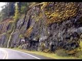 автомеханик - песня клип (моя работа, училась оживлять фото, теперь владею этой программой в совершенстве)