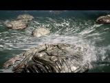 Scalebound - Trailer Gameplay E3 2016