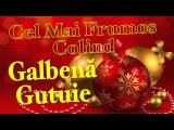 Galbena Gutuie - Cele Mai Frumos Colind