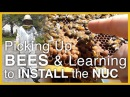 Beginning Beekeeping: Learning to Install the Nuc Hives - GSB S1 E1