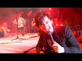 The Last Shadow Puppets - Les Cactus (Jacques Dutronc cover) PRO-SHOT