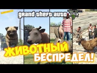 GTA 5 - ЖИВОТНЫЙ БЕСПРЕДЕЛ!