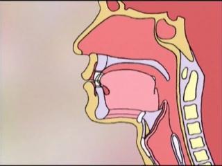 Цигун-шесть оздоровительных звуков-лю цзи цзье 1