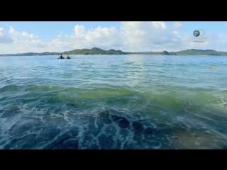 Остров с Беаром Г. 2 сезон / 4 серия. ( 720р ) --- Вк плеер.
