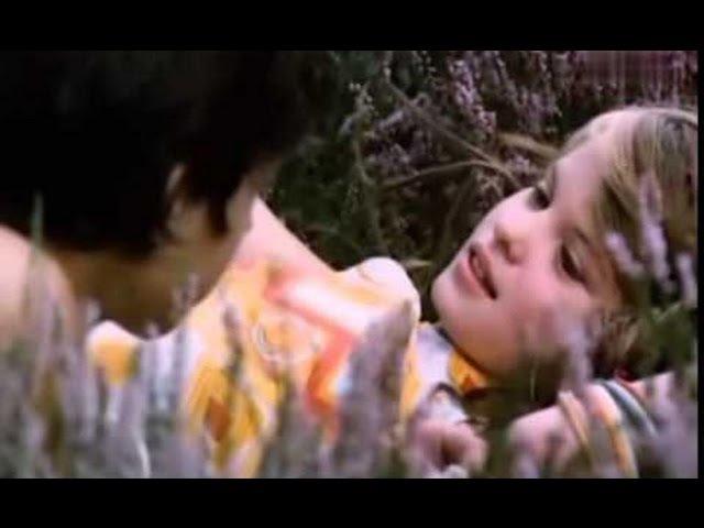 Motyle - Film Polski 1972