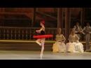 Ekaterina Krysanova / Ivan Vasiliev - Don Quixote
