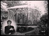 Архитектор Данини Парадоксы истории