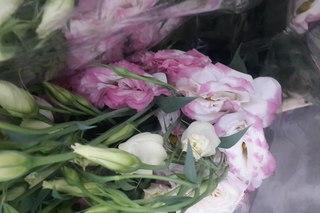 Для тети оптовые базы центры цветов спб цветов розы