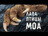 6 невероятных археологических открытий