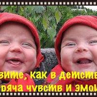 Александр Морозов | Родники