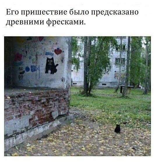 http://cs630126.vk.me/v630126968/2b695/ySfl9IGeK-Y.jpg