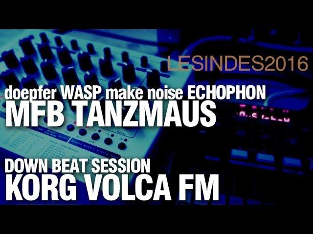 MFB TANZMAUS KORG VOLCA FM Downbeat Session