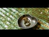 Perhat Atayew - Toy Aydymy (Seyran & Guncha)[2016]HD