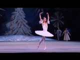 Щелкунчик - Танец феи Драже (Нина Капцова)