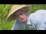 Welcome to the rice fields, motherfucker