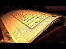 Quran and Science Top Documentary Films docfilms