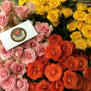 Витебск доставка цветов на дом купить высокий пакет для розы