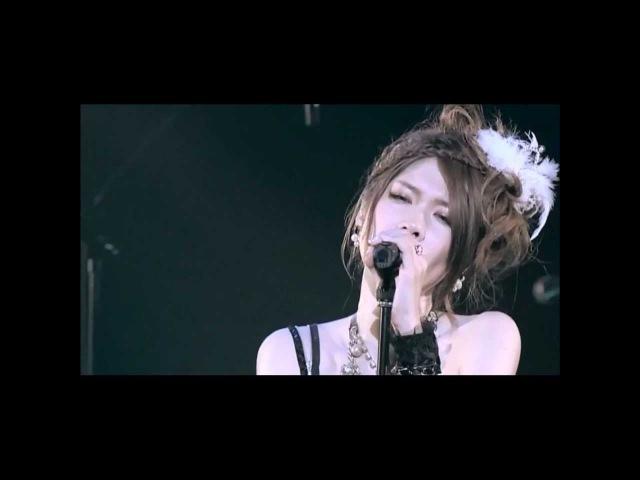 Kishida Kyoudan The Akeboshi Rockets PP LIVE