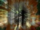 Sensorica - Anomalye's Motion