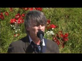 Neil Finn - The Lonely Mountain (Live)