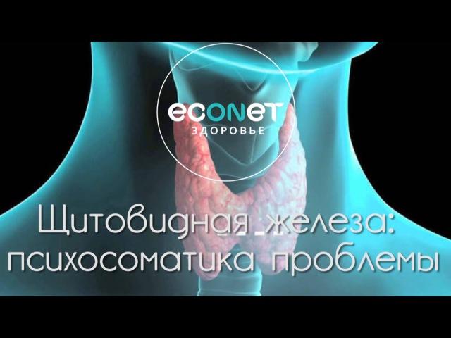 Щитовидная железа психосоматика проблемы | econet .ru
