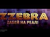 ОБЗОР Игровой сервер Zzebra-PW.COM PVE 18.02.2016