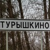 Турышкино