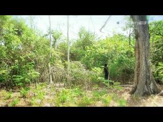 Остров с Беаром Гриллсом 6 серия The Island with Bear Grylls