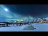 Есть красота своя в ЗИМЕ | Зимние пейзажи  Дикая лесная сказка / HD