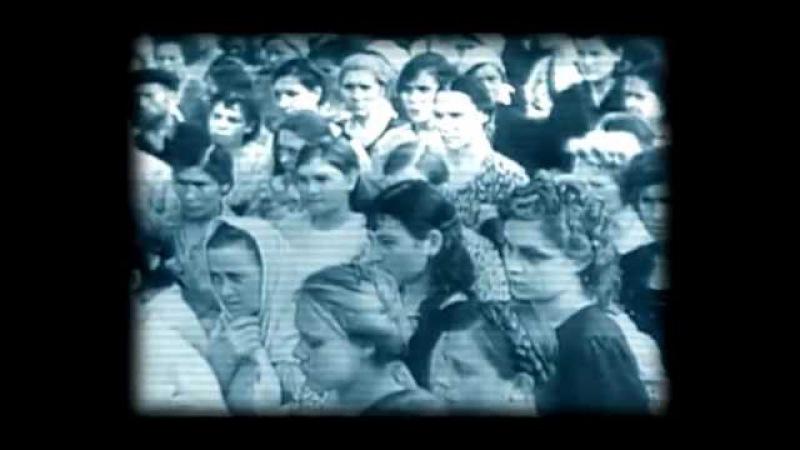 МИЗАНДРИЯ Мужененавистничество Фильм лекция о мужском бесправии в РФ