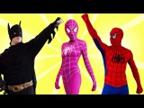 Superhero battle in real life. Spiderman & Batman vs Deadpool w/ Spider Girl. Pink Girl Revenge
