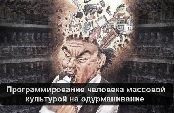 https://pp.vk.me/c630131/v630131827/cb03/wBkLD7oqnD4.jpg