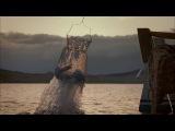 Vakıfbank Reklam Filmi- Neşet Ertaş, Gönüldağı
