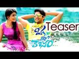 Oka Laila Kosam  Telugu Movie Trailer    Naga Chaitanya, Pooja Hegde