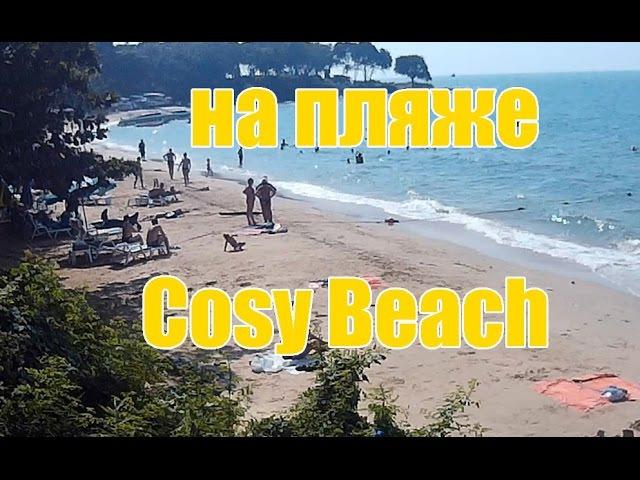 В декабре 2015 на пляже Cosy beach