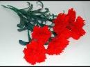 Kwiaty z bibuły - Goździk krok po kroku DIY paper flowers