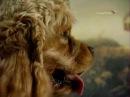 Константин Маковский. Дети, бегущие от грозы. В музей - без поводка. 21 серия
