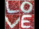 Crvena Jabuka Tamo gdje ljubav pocinje